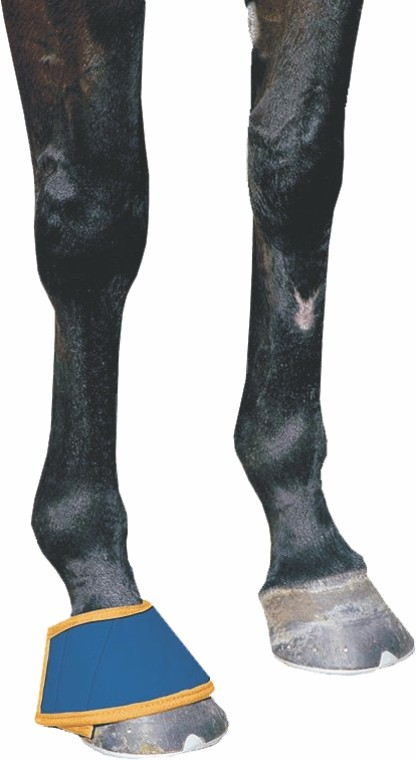 Dick Wicks Magnetic Horse Bell Boot